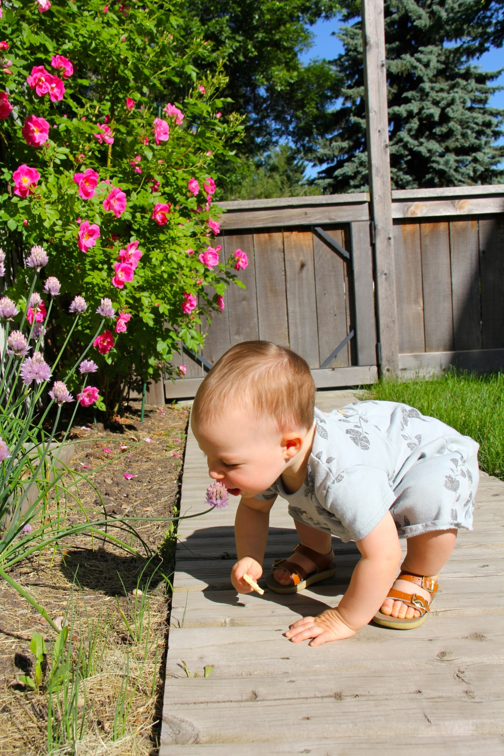 Baby Fashion smelling flowers