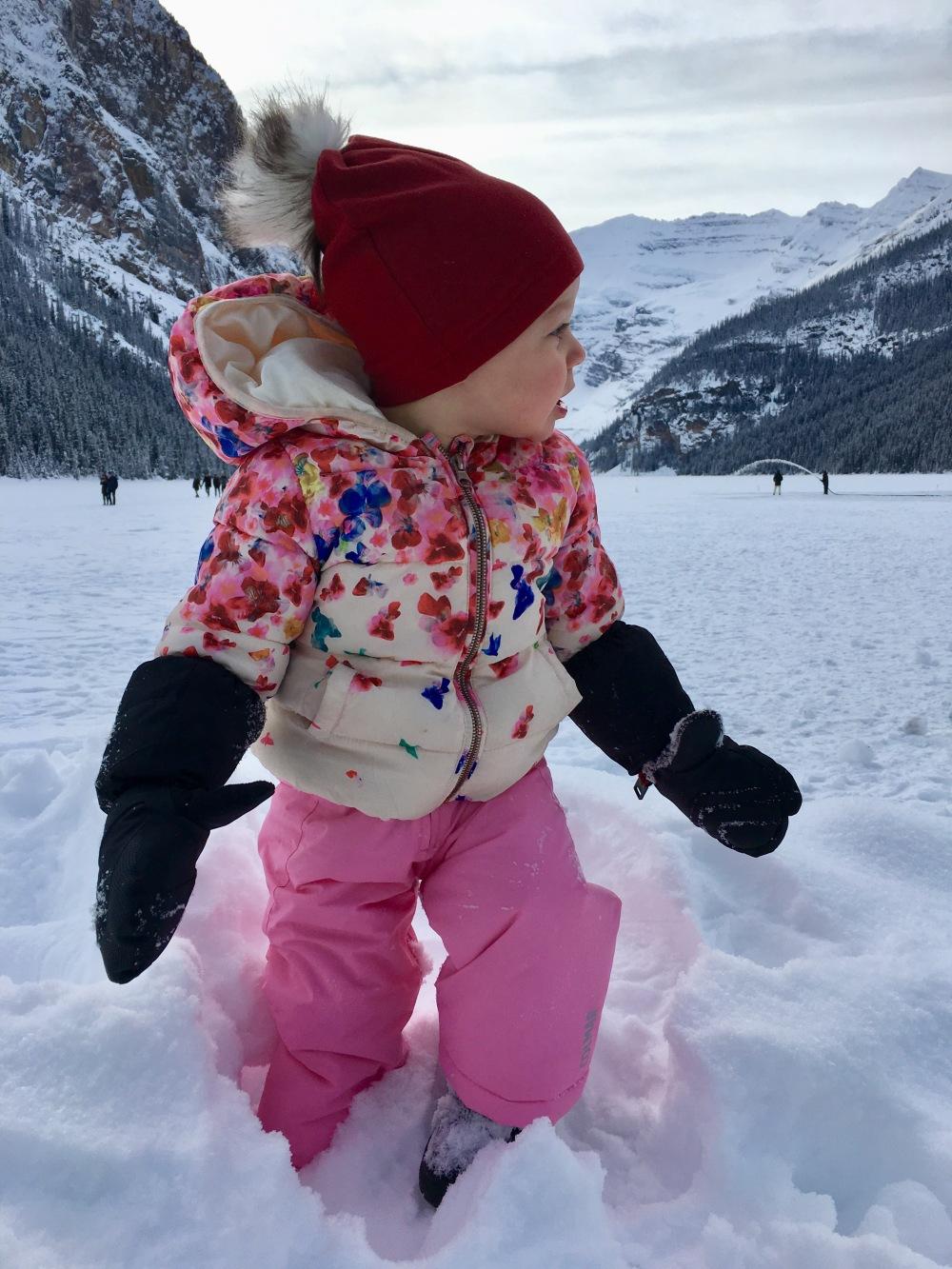 Lake Louise Winter Bunny