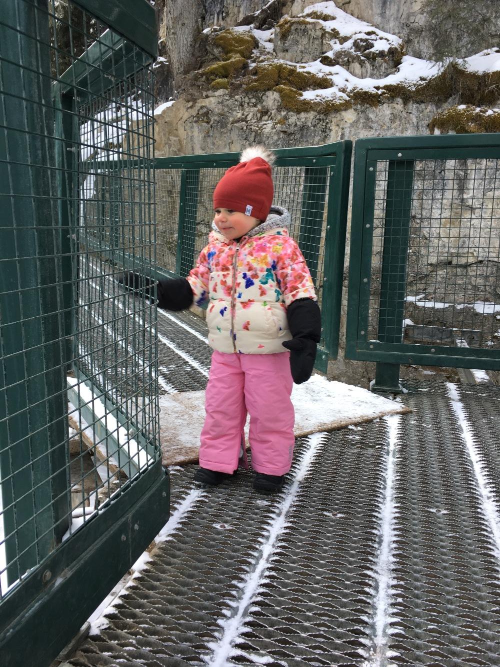 Johnston Canyon Ice Hike Baby